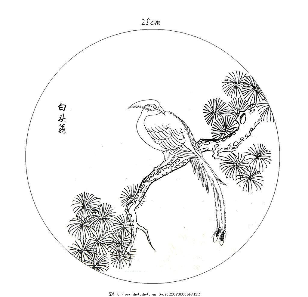 白头翁 白描 速写 线描 花鸟 线描素材 松树 国画 其他 源文件 150dpi