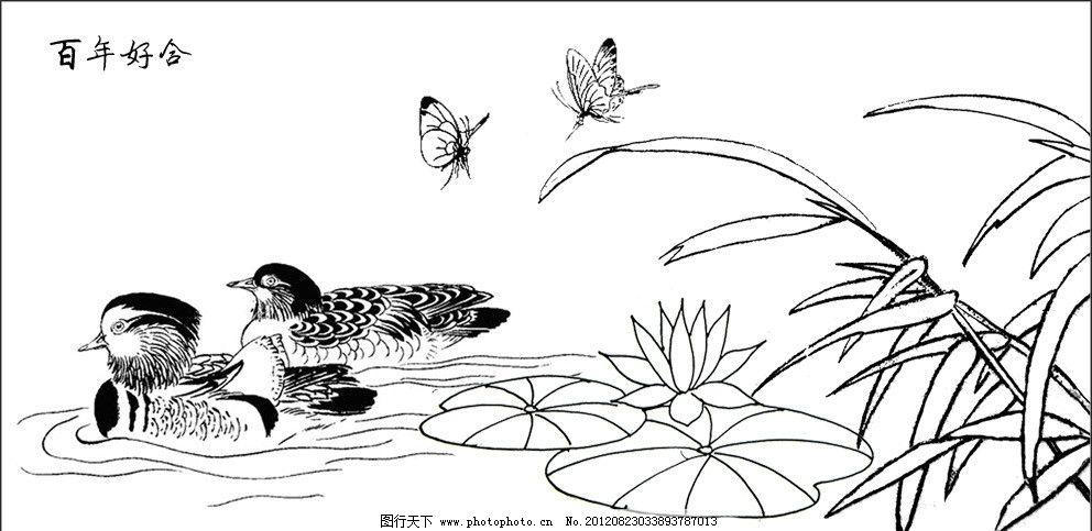 白描 速写 线描 花鸟 线描素材 白头翁 松树 国画 鸳鸯 荷花-百合花线