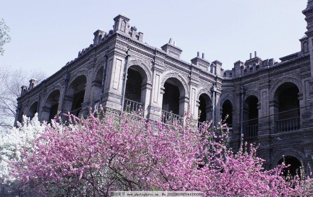 古建筑 欧式 段祺瑞执政府 春天 树枝 樱花 花卉 建筑摄影 建筑园林