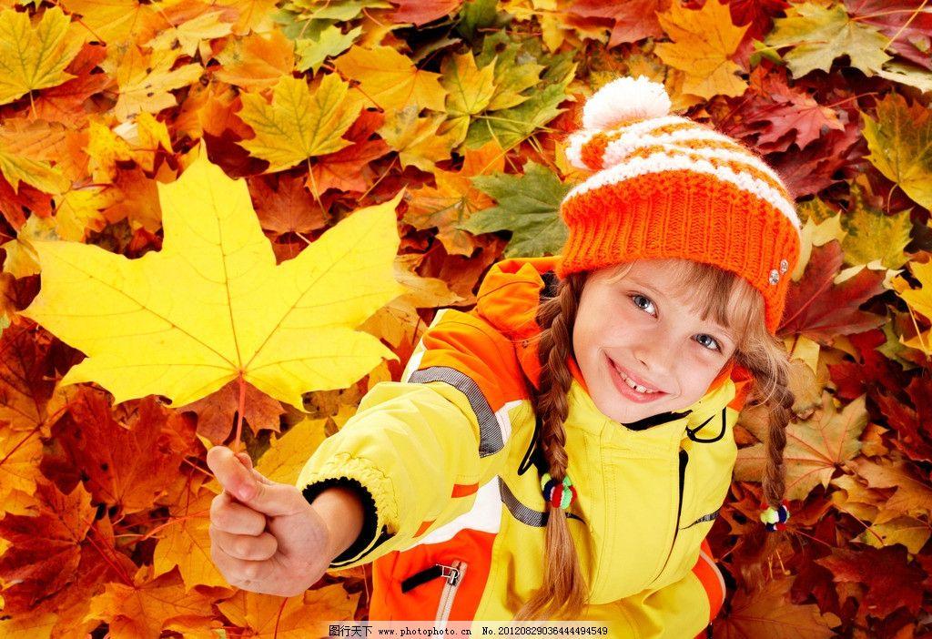 手拿枫叶的小女孩 摄影 人物 儿童 可爱 欧美 金发 落叶 红色