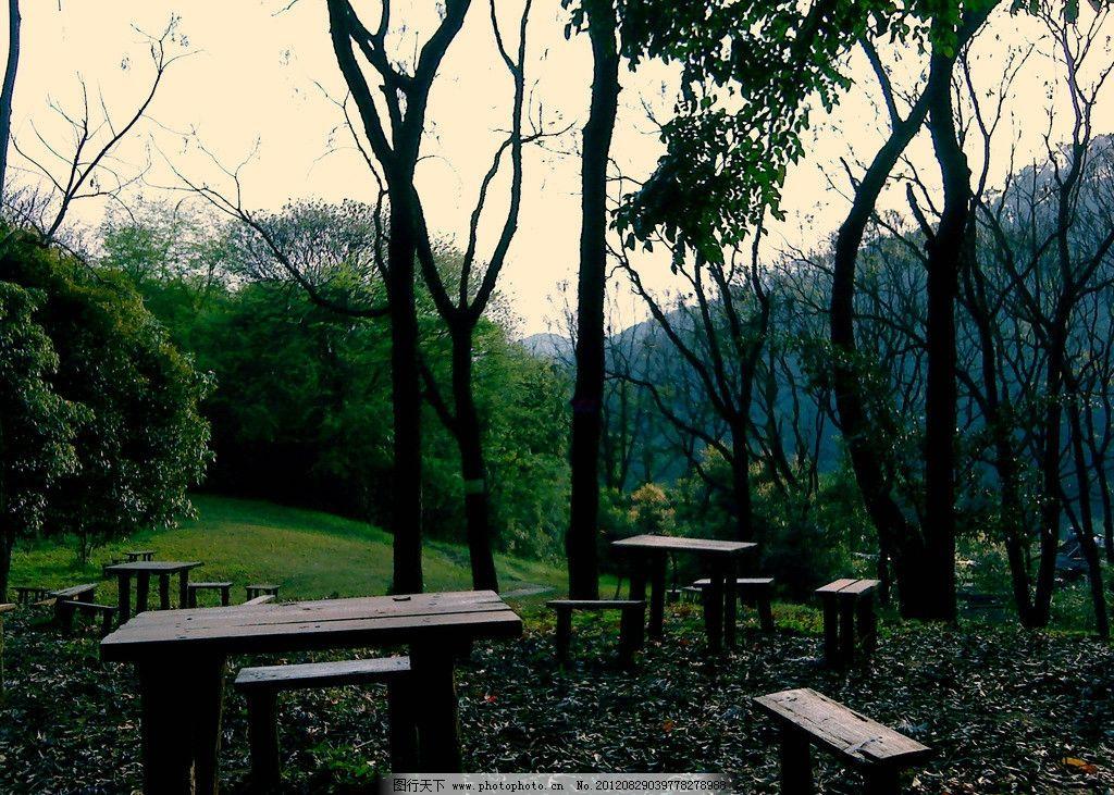 木凳 木桌 桌椅 树木 森林 公园 远山 落花 草地 建筑园林