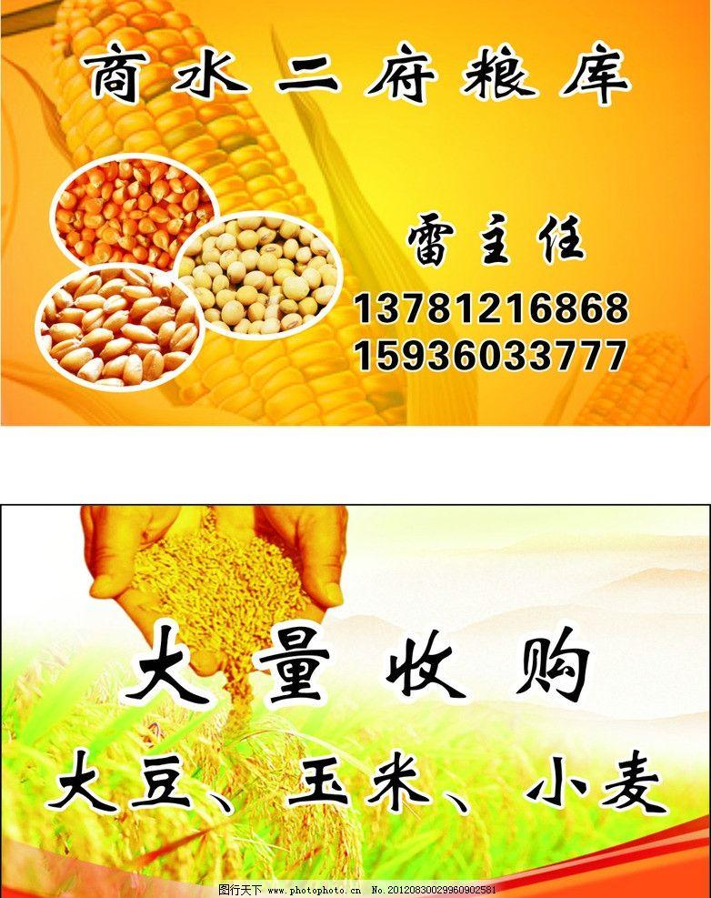 粮库名片 玉米 大豆 小麦 粮食 粮库 名片 名片卡片 广告设计 矢量