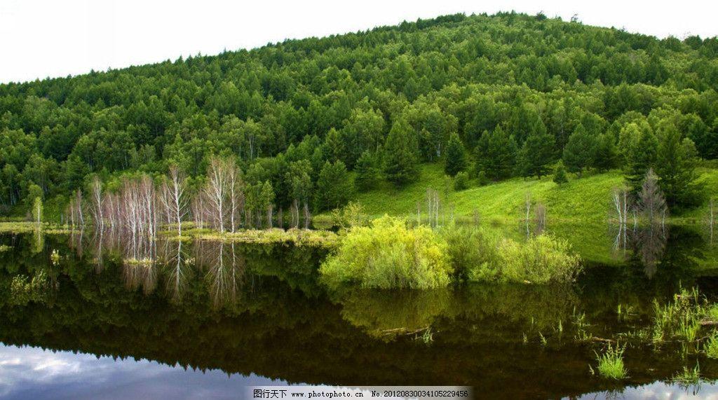 草原风景 天空 山峰 森林 湖水 水中的树 倒影 呼伦贝尔大草原