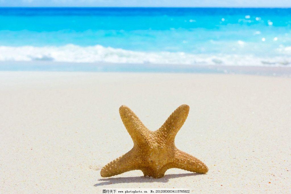 沙滩 天空 海边 海星 海水 海景 风景 自然风景 旅游摄影 摄影 300dpi