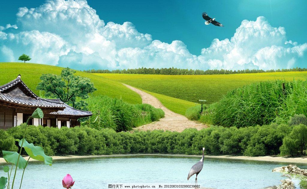 湖畔风景 湖 水潭 荷花 鹤 小溪 木屋 树林 天空 老鹰 山丘 泥路 风景