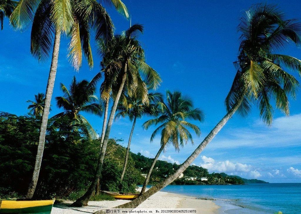 马尔代夫 椰树 海滩 海边 海洋 小船 椰子 蓝天 蓝色 热带风景 旅游