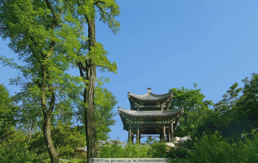 亭子 玉渊潭公园 大树 树林 国内旅游 旅游摄影 摄影 72dpi jpg