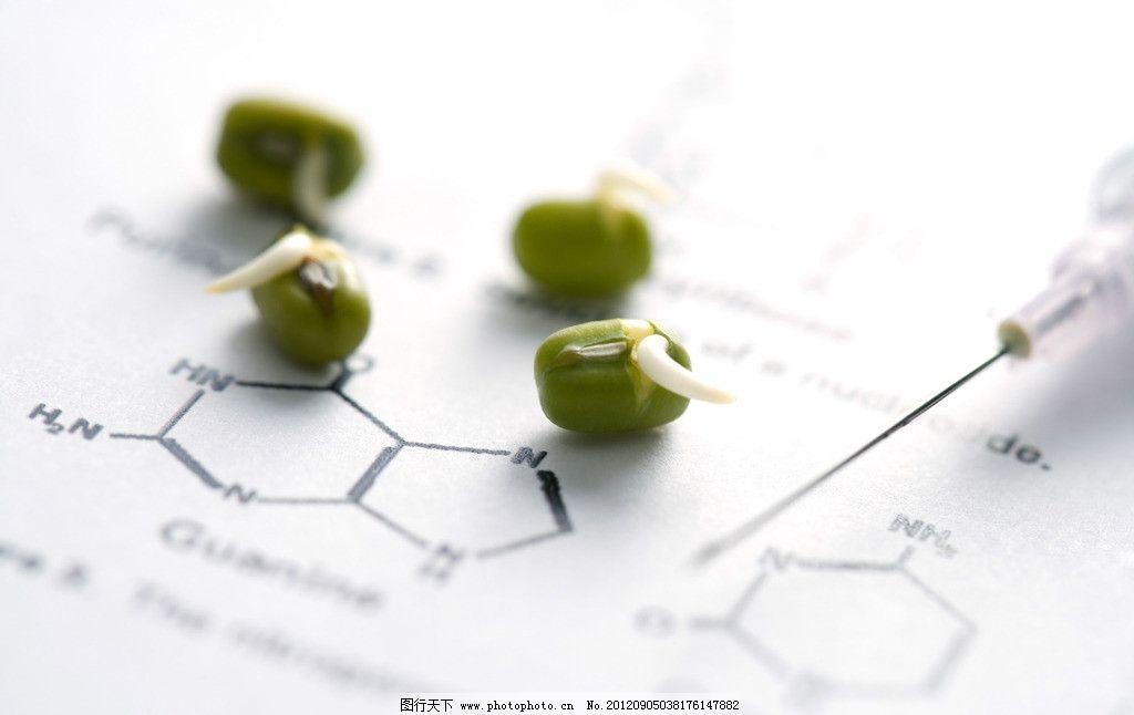生物科研 生物科学 生物研究 绿豆 生物结构 绿豆分子 生物实验室