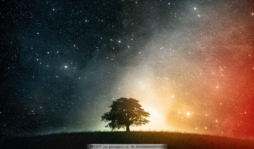 流星雨星空 设计 大树 夜晚 流星雨 狮子座 星空 银河 cg 梦幻 背景