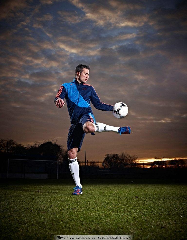 阿迪达期足球运动服 阿迪达斯 predator_vanpersie 2012年新款 足球