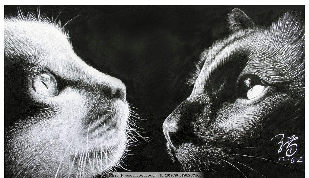 黑白猫 动物 钢笔画 绘画 小猫 黑猫