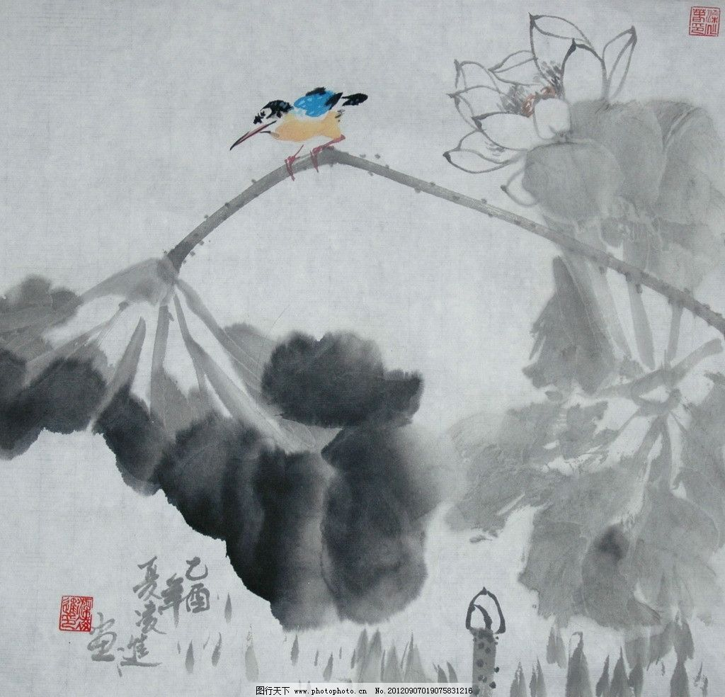 荷塘 艺术 中国 绘画 中国画 技法 参考资料 荷花 小鸟 鸟