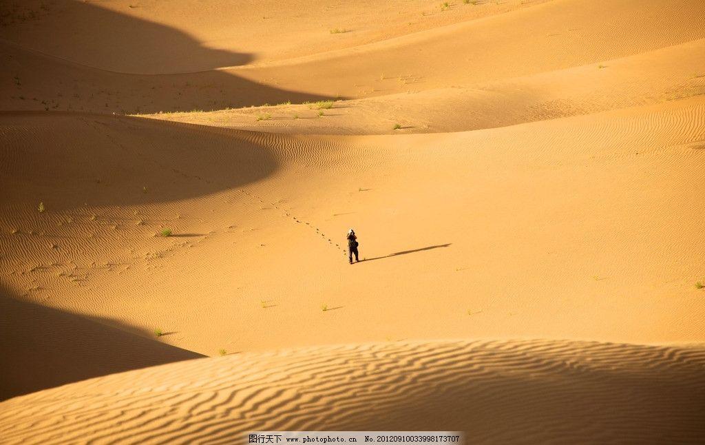 金色沙漠里的独行者 内蒙古 鄂尔多斯 达旗 达拉特旗 响沙湾 旅游