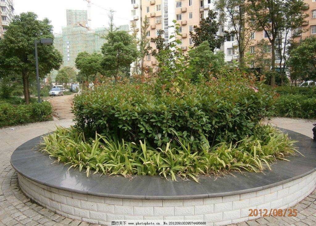 花坛 绿化 小区景点 绿水植物 园林建筑 建筑园林 摄影 314dpi jpg