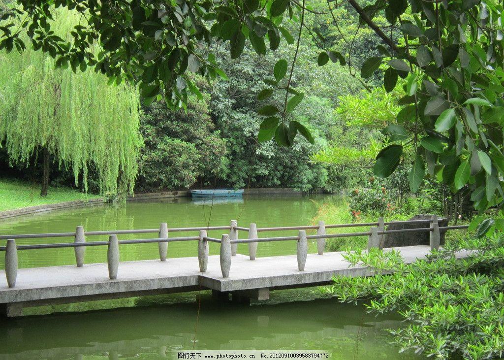 雕塑公园 柳树 小桥流水 绿树 湖水 公园 夏天 石栏 园林建筑 建筑