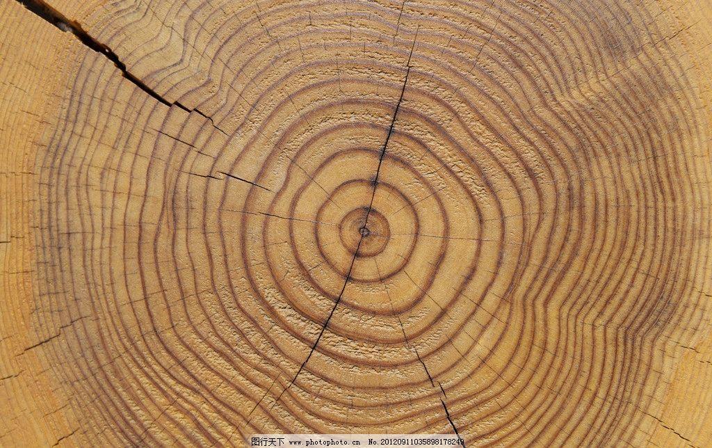 木纹底纹 木板背景 木板纹 高清木纹 背景底纹 千年古木 树木树叶