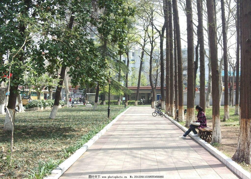 南京师范大学校园美景(非高清)图片