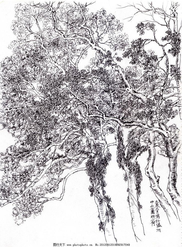 手绘树林图片