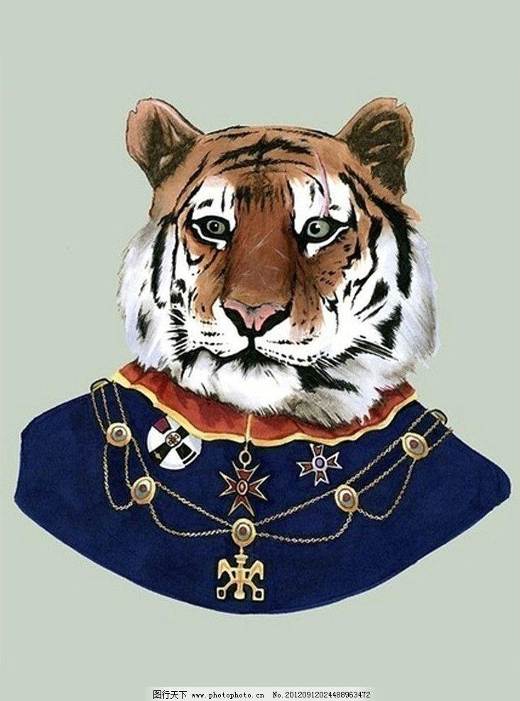 动物老虎图片