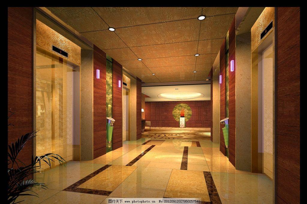 电梯厅 电梯门 筒灯 大厅天花 盆栽 火红叶 室内设计 环境设计 设计 1