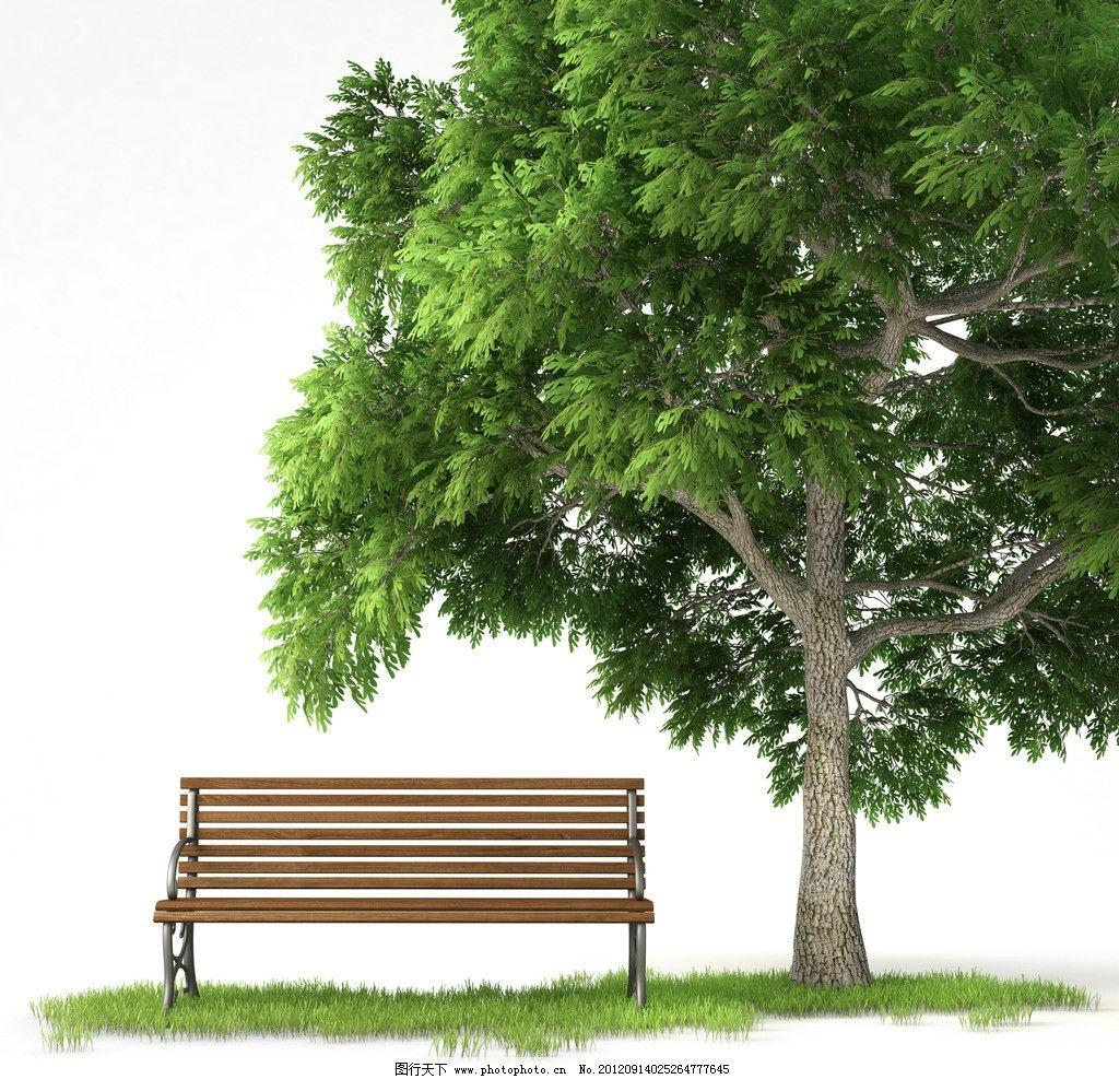 园林绿树图片_树木树叶_生物世界_图行天下图库