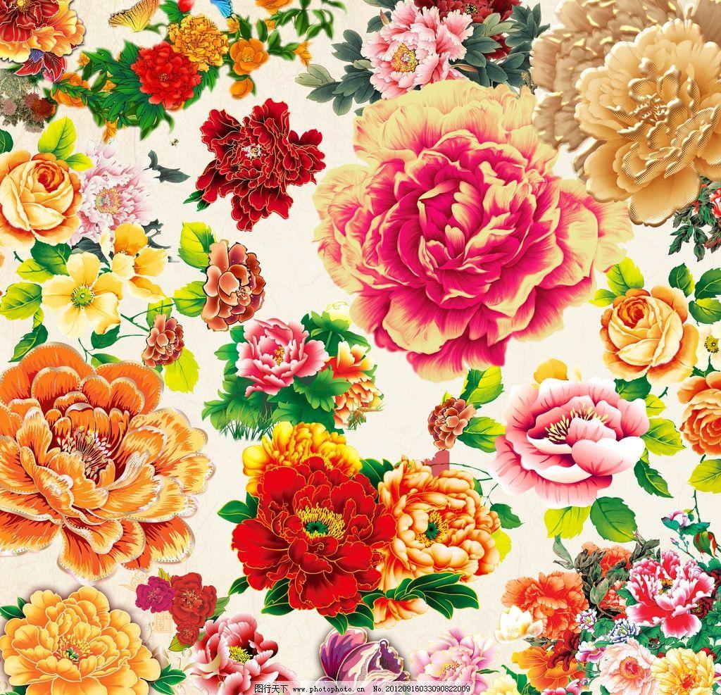 牡丹花素材图片,花开 富贵 中秋节 叶子 鲜花 中秋-图
