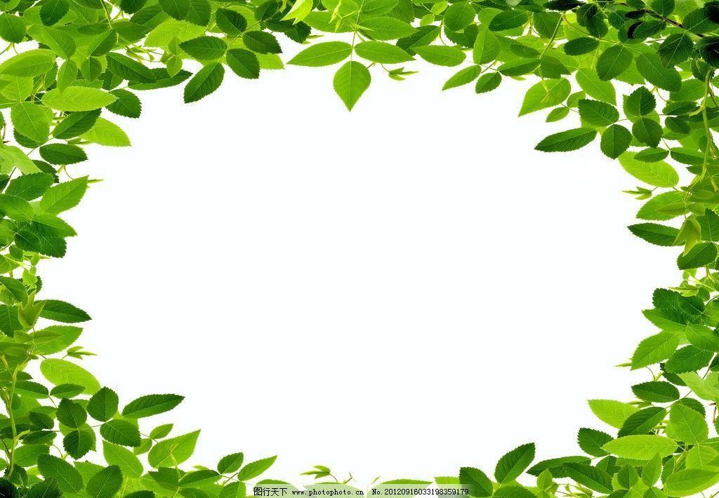 相框 绿色 背景 清新 简单 简洁 大头贴 圆形 树叶 绿叶 边框 自然
