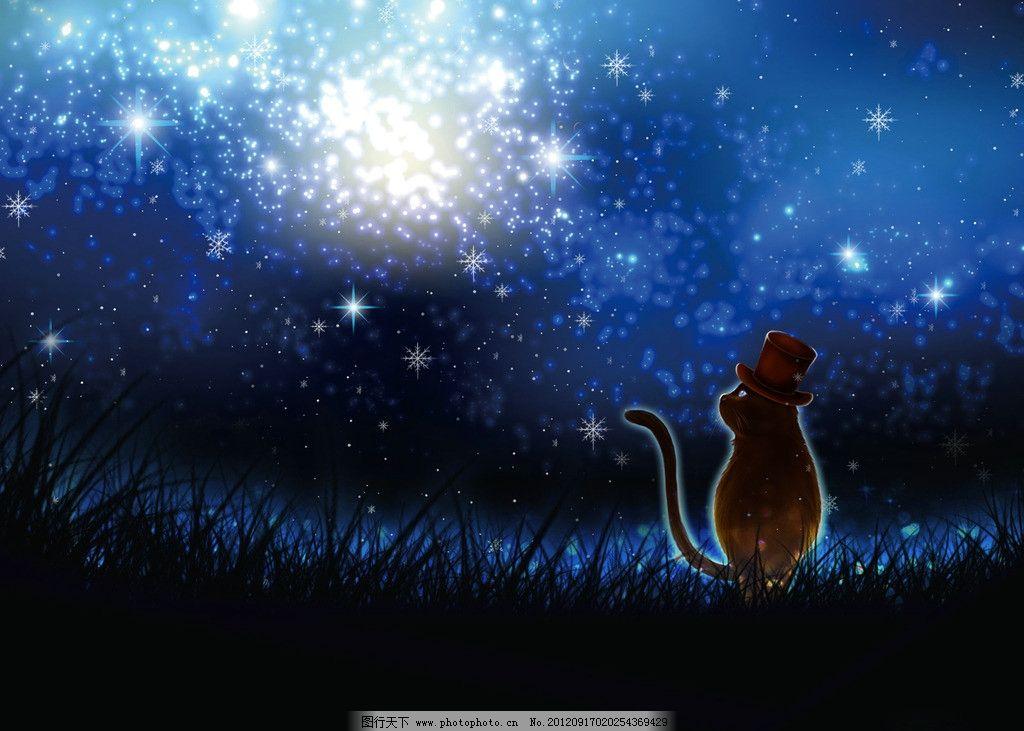 魔术猫先生 魔术猫 猫咪 猫 动物 星光 夜晚 夜空 星空 帽子 魔术帽