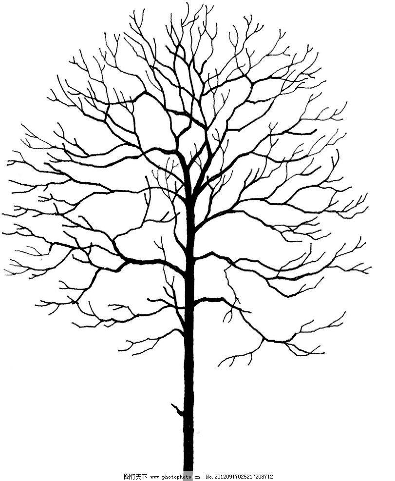 树干简笔画图片大全