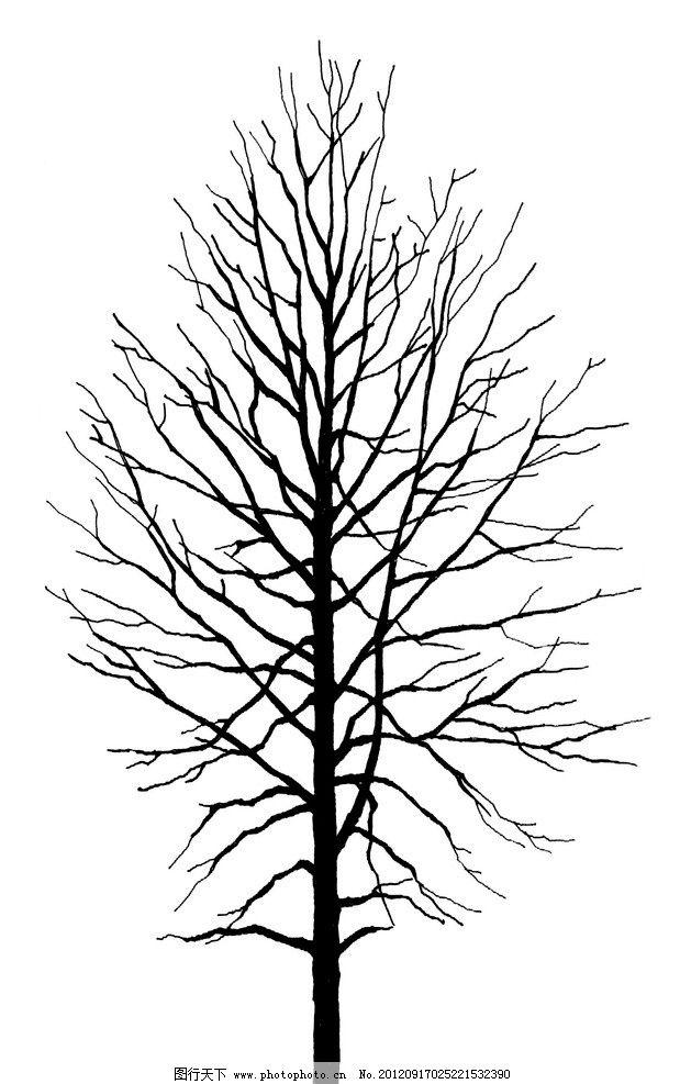 ps黑白树素材图片_树木树叶_生物世界_图行天下图库