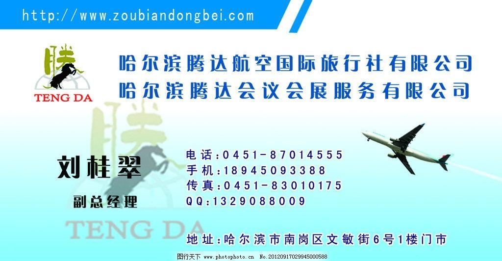 旅游名片 旅游名片航空名片 名片设计 飞机 淡蓝色 个性名片 名片卡片