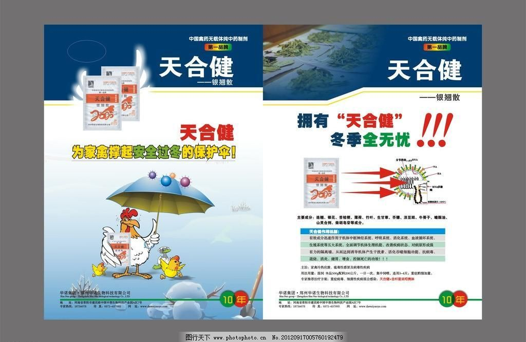 广告设计 海报设计 卡通鸡 产品宣传单页矢量素材 产品宣传单页模板下图片