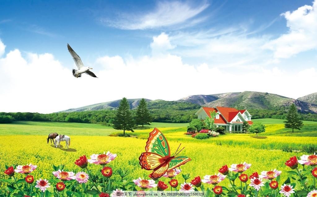 花 花草 房子 别墅 蓝天 草原 油菜花 太阳花 菊花 白云 蓝天白云