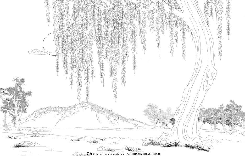 柳树彩铅手绘图片