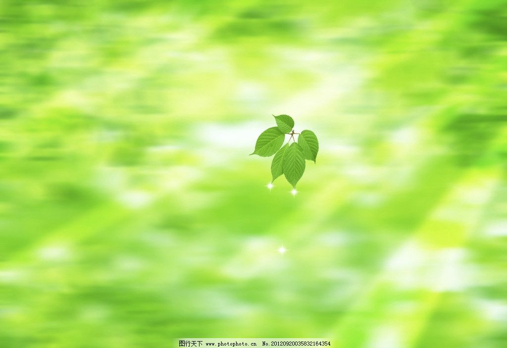 绿色树叶 绿背景 树叶 绿叶 椭圆形叶子 树枝 叶脉 绿色 春天 清新