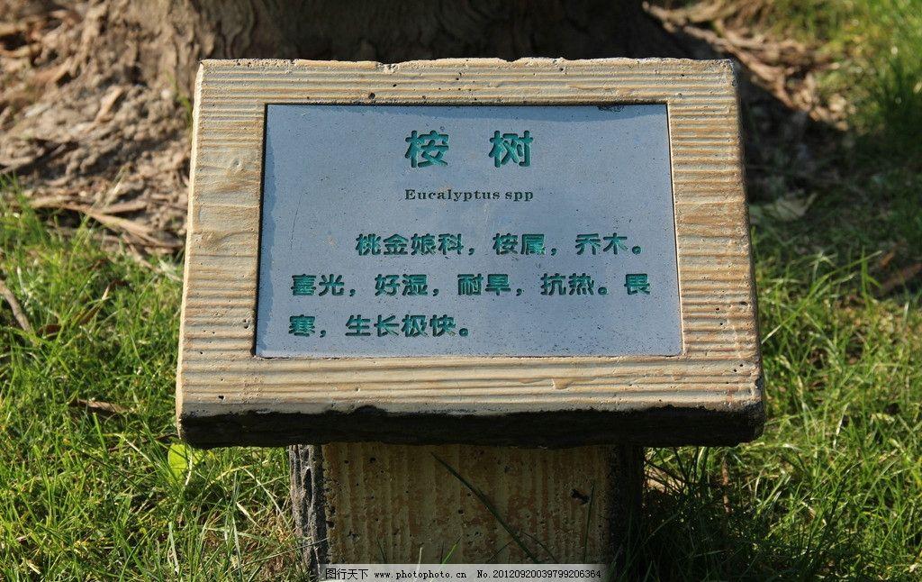 展示牌 指示牌 立牌 公园 桉树 草地 其他 建筑园林 摄影 72dpi jpg