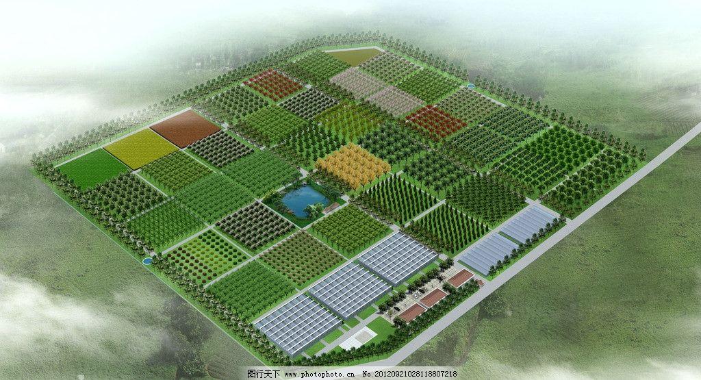苗圃规划效果图 苗圃 规划        景观设计 环境设计 设计 72dpi jpg
