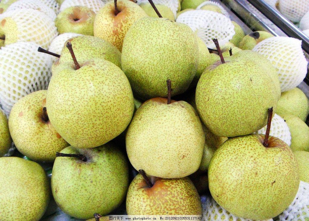 砀山梨 高清砀山梨 梨 水果写真 新鲜 水果 生物世界 摄影 96dpi jpg