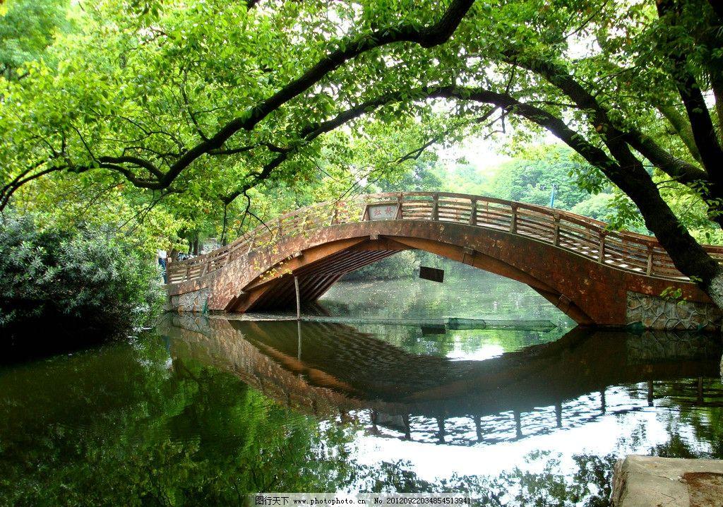 公园小桥 公园 大树 树林 小桥 森林 山林 生态公园 自然 森林公园
