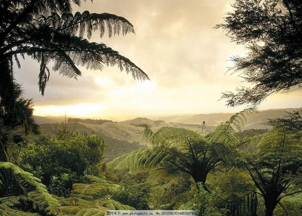 山峦 树木 绿色 绿树 自然风景 自然景观 摄影
