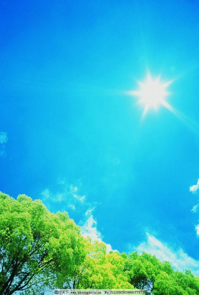 绿树 蓝天 大树 天空 白云 淡云 阳光 绿色 晴空万里 风景画
