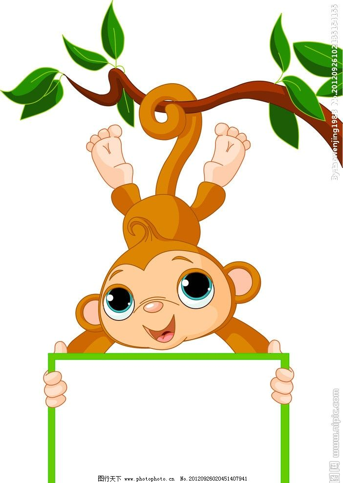 卡通 猴子 卡通猴子 白板 动物 边框相框 底纹边框 设计 72dpi jpg