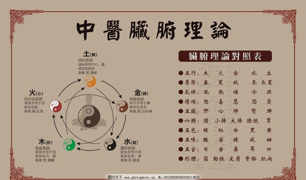 中医脏腑理论图片