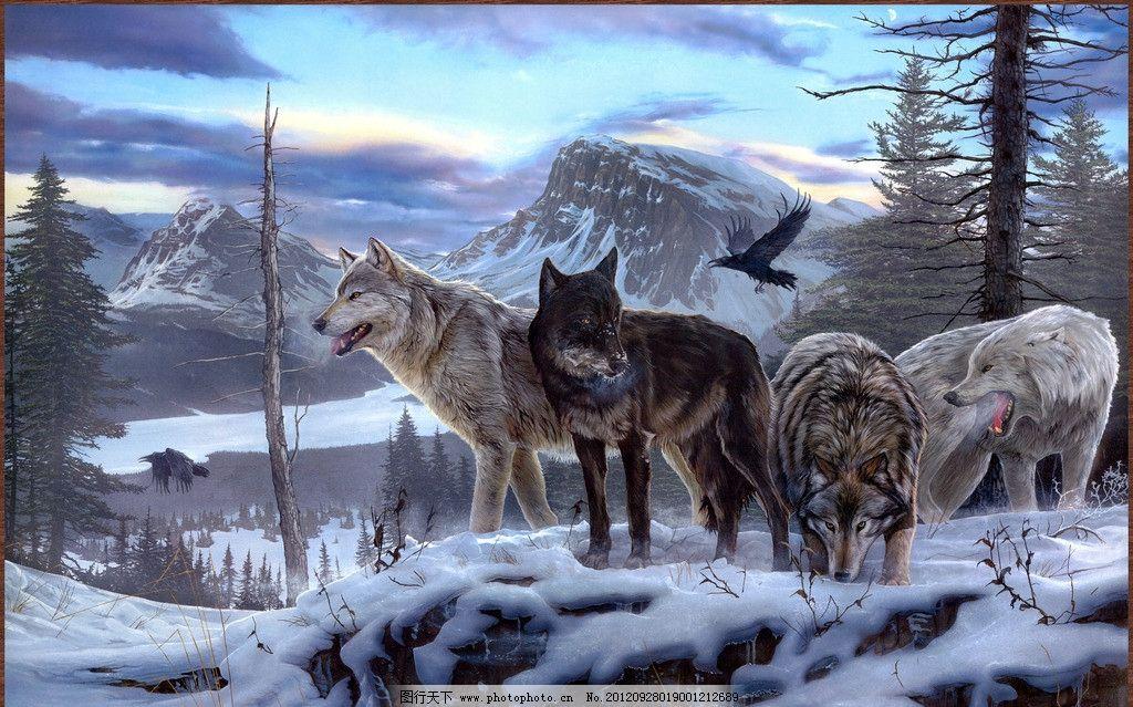 狼群 白狼 灰狼 狼头 团队 雪地 冬天 北极 动物 油画 绘画